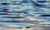 МЧС: список утонувших в Петербурге людей пополнился еще четырьмя именами