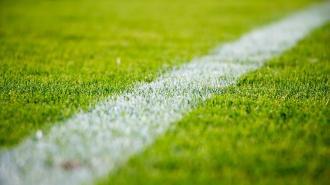 Сборная Словакии по футболу определится с базой в Петербурге в ближайшие дни