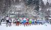 В Ленобласти стартовала регистрация участников традиционного лыжного марафона в Токсово