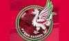 Фанаты Рубина устроили разборки из-за новой эмблемы