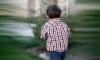 """Дерзкое похищение 7-летнего мальчика на выходе из """"Диво-Острова"""" шокировало петербуржцев"""