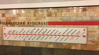 """Петербурженка обвинила мигранта в совращении ее дочери на станции """"Гражданский проспект"""""""