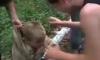 В бывшем Сталиногорске подростки снимали на видео садистские «забавы»