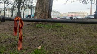 В Александровском саду вытоптали цветы в День Победы
