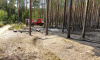 Спасатели потушили пожар в Курортном лесничестве