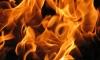 Трое маленьких детей сгорели заживо в Курганской области
