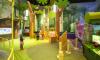 День знаний в Angry Birds Activity Park
