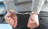 Петербургская полиция поймала двух подозреваемых в ограблении иностранцев