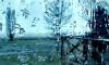 Леус: Гольфстрим спровоцировал зимнюю оттепель в Петербурге