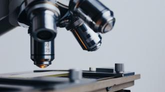 В Петербурге заработал новый научный центр мирового уровня
