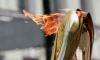 На эстафете Олимпийского огня геи развернули радужный флаг