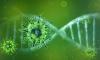 Учёные нашли людей, невосприимчивых к коронавирусу