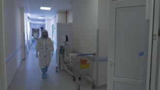 Декабрь побил рекорд по смертности в Петербурге в 2020 году