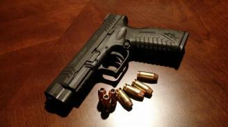 Эксперт выступил за ужесточение правил получения разрешения на оружие