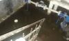 Можно плавать: на Ремесленной улице затопило подвал жилого дома