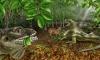 В честь Джима Моррисона назвали ископаемую ящерицу