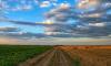 Безработным в Ленобласти предложат участвовать в развитии сельского хозяйства