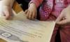 Петербуржцы смогут потратить материнский капитал на частные детские сады и нянь