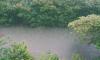 Петербуржцам придется потерпеть мокрую и прохладную субботу