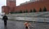 Художник Павленский прибил себя к брусчатке Красной площади