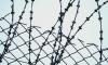 Амнистия к 20-летию Конституции даст шанс на свободу 200 тыс человек