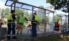 В Санкт- Петербурге 3 тысячи остановок вымоют безопасным шампунем
