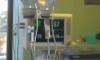 В Петербурге подтвердили еще пять смертей от коронавируса