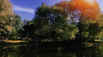 Власти Петербурга усилят контроль на городских водоёмах