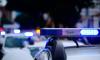 В Малой Охте петербуржец насиловал в коммуналке трехлетнюю приемную внучку