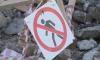 Игорь Албин пытается решить проблему строительства детского садика на Суздальском