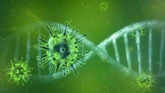 В России зафиксировано 5 204 новых случая заражения коронавирусом