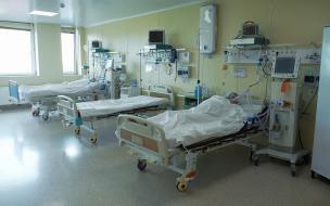 В Петербурге за неделю число новых случаев коронавируса выросло почти на 250%