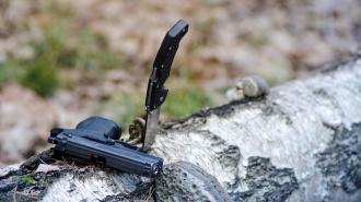 Во Всеволожском районе нетрезвый житель обстрелял представителя полиции