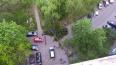 Еще три дерева за день упали на машины в разных районах ...