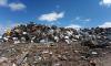 Жители Гатчины объявили войну мусору