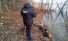 Под Саратовом из Волги вытащили тело женщины с ножевыми ранениями