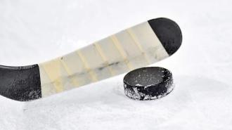 """Гол Свечникова помог """"Каролине"""" обыграть """"Нэшвилл"""" в матче первого раунда плей-офф НХЛ"""