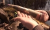 В Ленинградской области два солдата пытались продать боеприпасы