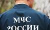 В Смоленской области заблудившийся 89-летний ветеран прожил в лесу четыре дня