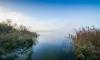 В Кавголовском озере обнаружили угнанный автомобиль жителя Выборга