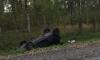 В День ВДВ на Мурманском шоссе разбились двое десантников