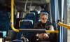 В Петербурге для пассажиров сократили время ожидания транспорта