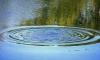 В пруду парка Калининского района утонул ещё один человек