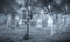 В Петербурге пол пожарной части уложили могильными плитами с еврейского кладбище