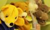 На детский сад, где отравились 12 детей, завели уголовное дело