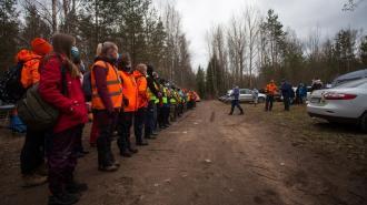 "В Ленобласти в апреле отряды ""Лиза Алерт"" искали 46 детей"