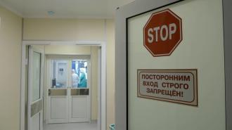 За последние сутки более 18 тысяч петербуржцев проверились на коронавирус