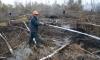 Экс-военные понесут наказание за кражу с места крушения самолета Качиньского