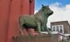 На бывшей территории мясокомбината на Дизельном проезде хотят открыть парк развлечений