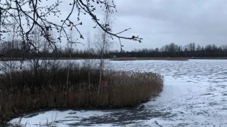 МЧС предупреждает: на востоке Ленобласти ожидаются морозы до -31 градуса